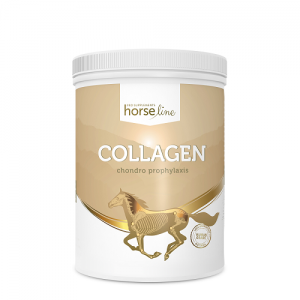 Collagen HorseLinePro