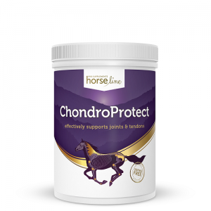 Chondro Protect HorseLinePRO na stawy