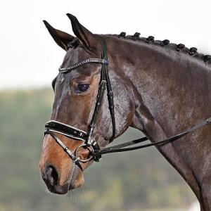 5cc1dc074191f Ogłowia - Sklep jeździecki Galloper